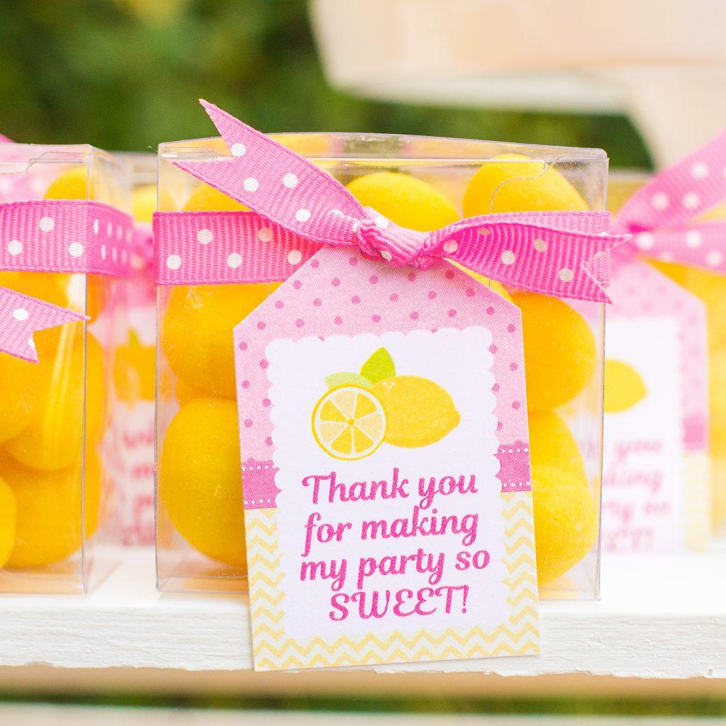 lemonade party – 5M Creations Blog